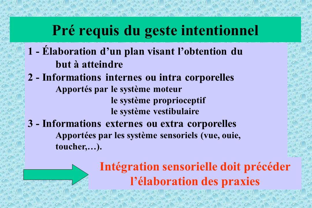 Pré requis du geste intentionnel 1 - Élaboration dun plan visant lobtention du but à atteindre 2 - Informations internes ou intra corporelles Apportés