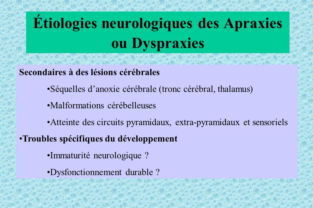 Étiologies neurologiques des Apraxies ou Dyspraxies Secondaires à des lésions cérébrales Séquelles danoxie cérébrale (tronc cérébral, thalamus) Malformations cérébelleuses Atteinte des circuits pyramidaux, extra-pyramidaux et sensoriels Troubles spécifiques du développement Immaturité neurologique .