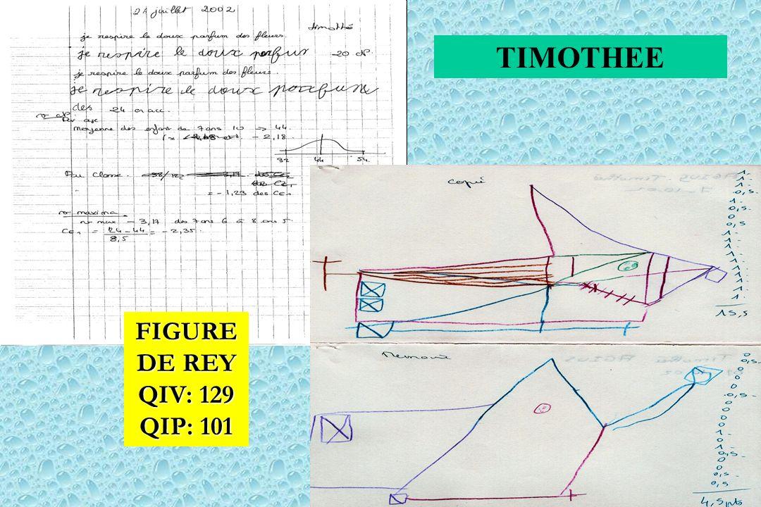 FIGURE DE REY QIV: 129 QIP: 101 TIMOTHEE