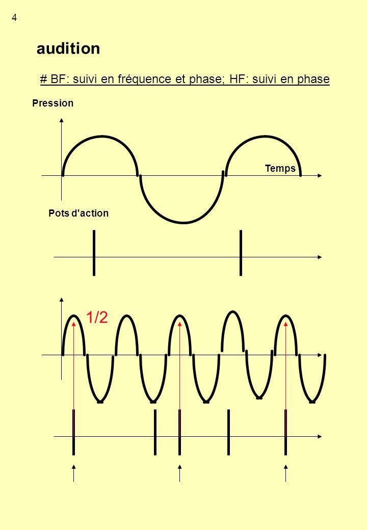 audition Pression Temps Pots d'action # BF: suivi en fréquence et phase; HF: suivi en phase 1/2 4