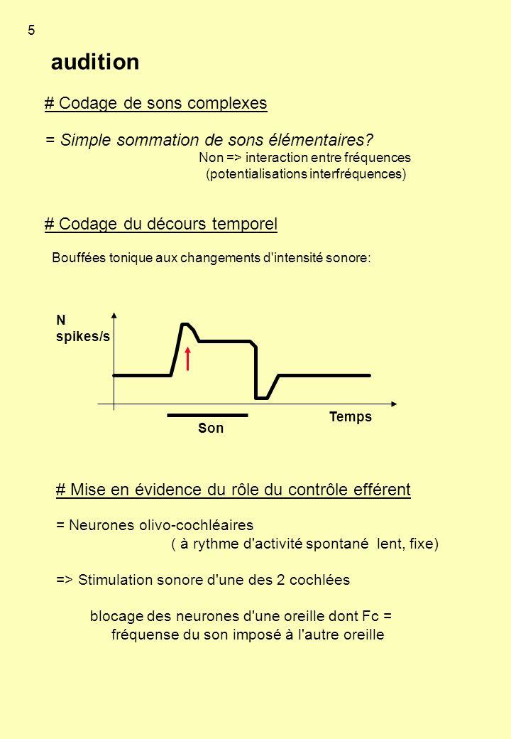 audition # Codage de sons complexes = Simple sommation de sons élémentaires? Non => interaction entre fréquences (potentialisations interfréquences) #