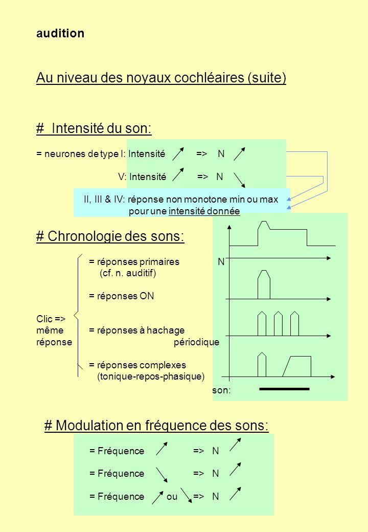 audition Au niveau des noyaux cochléaires (suite) # Intensité du son: = neurones de type I: Intensité => N V: Intensité => N II, III & IV: réponse non
