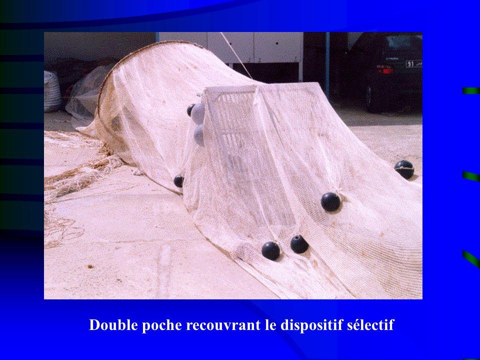 Double poche recouvrant le dispositif sélectif