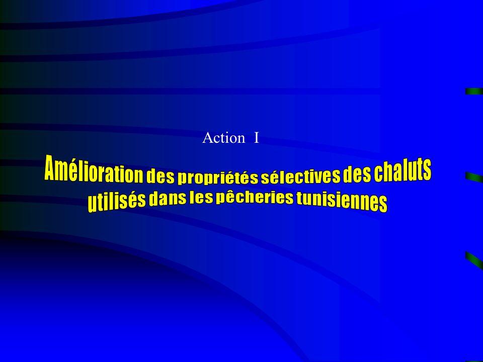 Action I
