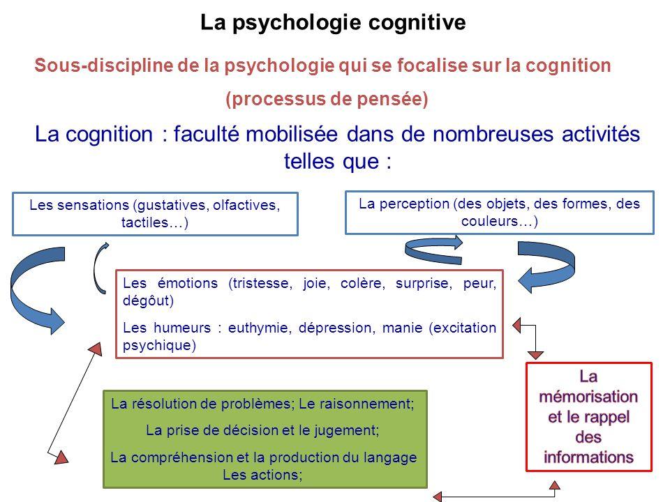 La psychologie cognitive Sous-discipline de la psychologie qui se focalise sur la cognition (processus de pensée) La cognition : faculté mobilisée dan