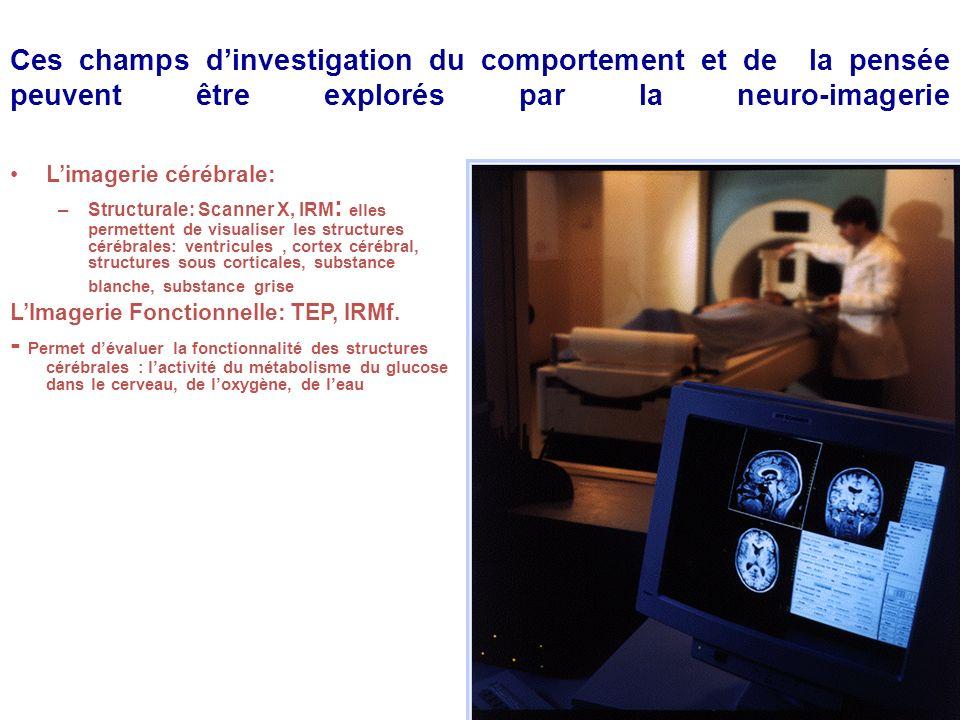 Ces champs dinvestigation du comportement et de la pensée peuvent être explorés par la neuro-imagerie Limagerie cérébrale: –Structurale: Scanner X, IR