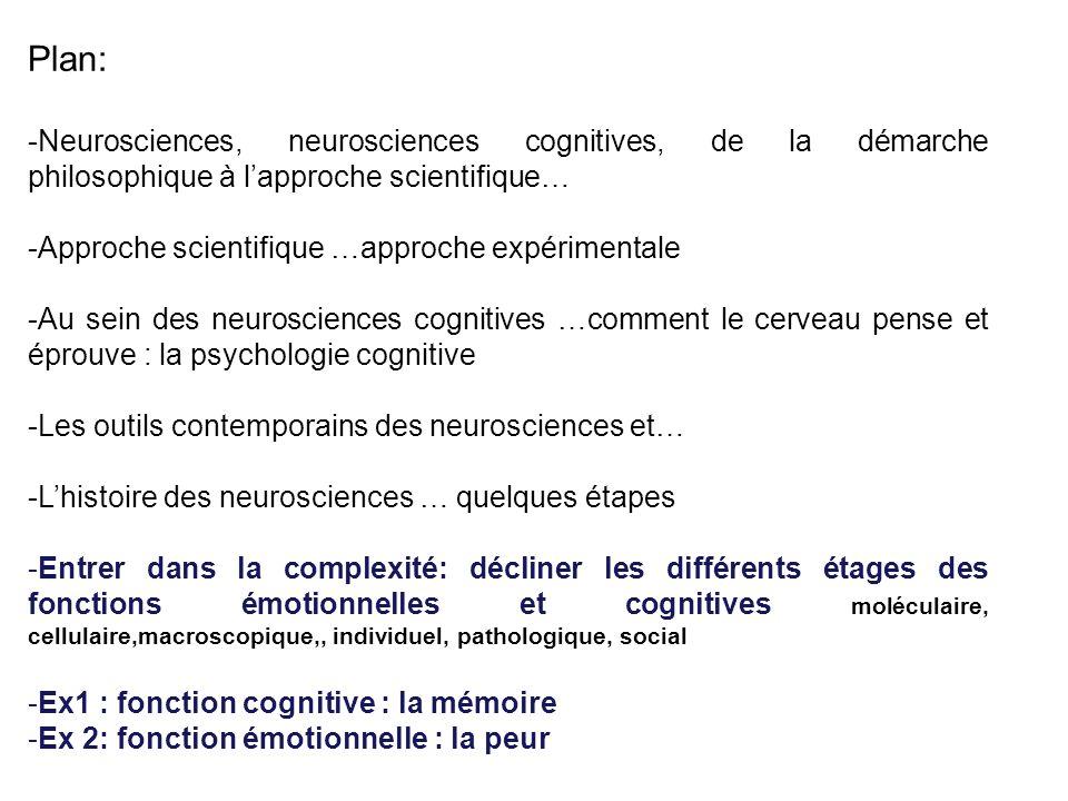 Plan: -Neurosciences, neurosciences cognitives, de la démarche philosophique à lapproche scientifique… -Approche scientifique …approche expérimentale