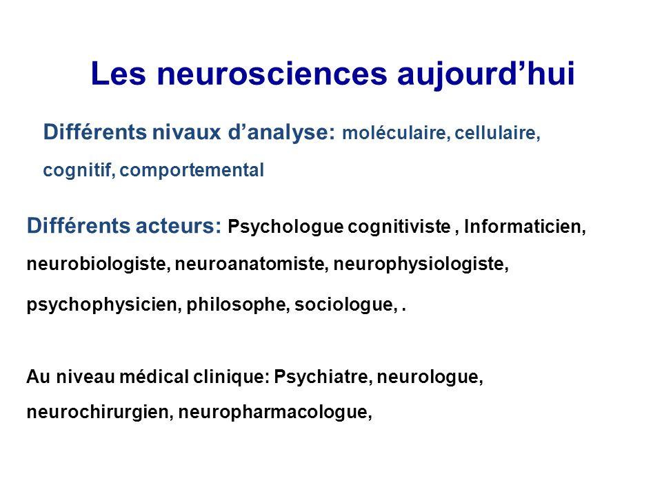 Les neurosciences aujourdhui Différents acteurs: Psychologue cognitiviste, Informaticien, neurobiologiste, neuroanatomiste, neurophysiologiste, psycho