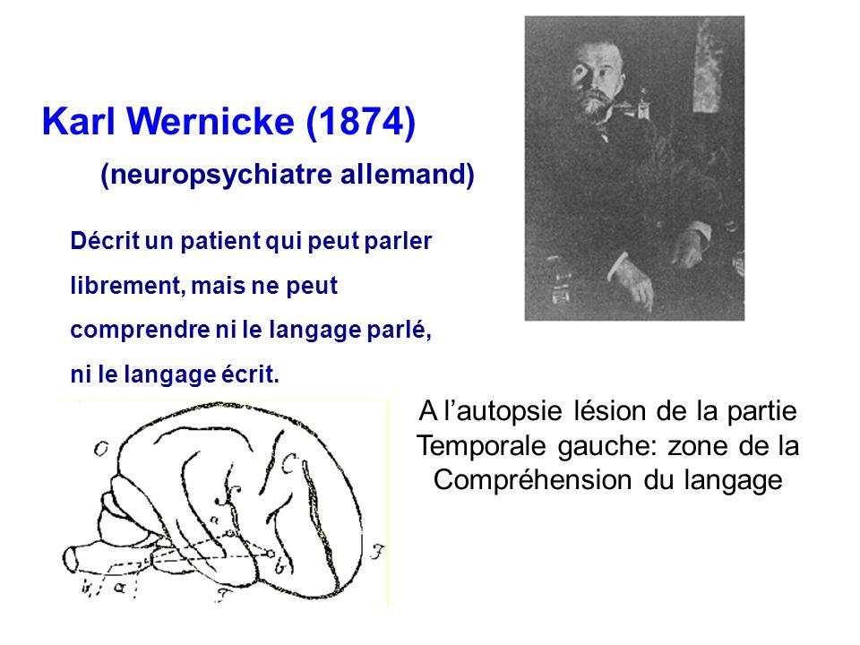 Karl Wernicke (1874) (neuropsychiatre allemand) Décrit un patient qui peut parler librement, mais ne peut comprendre ni le langage parlé, ni le langag