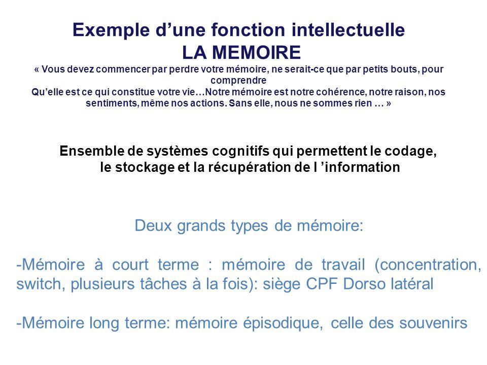 Exemple dune fonction intellectuelle LA MEMOIRE « Vous devez commencer par perdre votre mémoire, ne serait-ce que par petits bouts, pour comprendre Qu