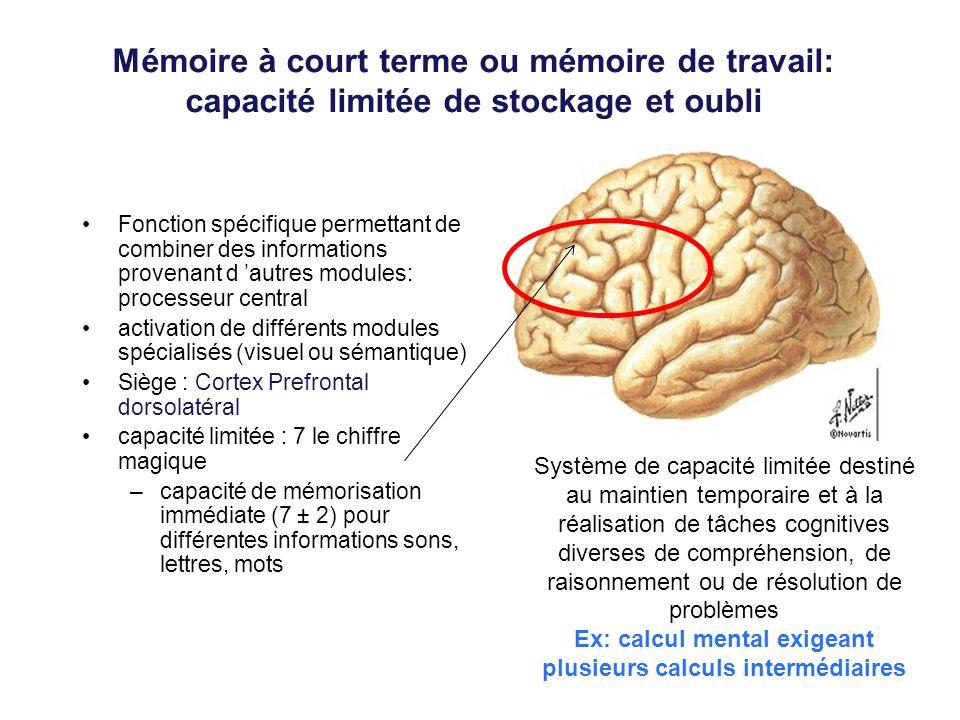 Mémoire à court terme ou mémoire de travail: capacité limitée de stockage et oubli Fonction spécifique permettant de combiner des informations provena