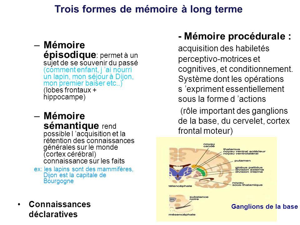 Trois formes de mémoire à long terme –Mémoire épisodique : permet à un sujet de se souvenir du passé (comment enfant, j ai nourri un lapin, mon séjour