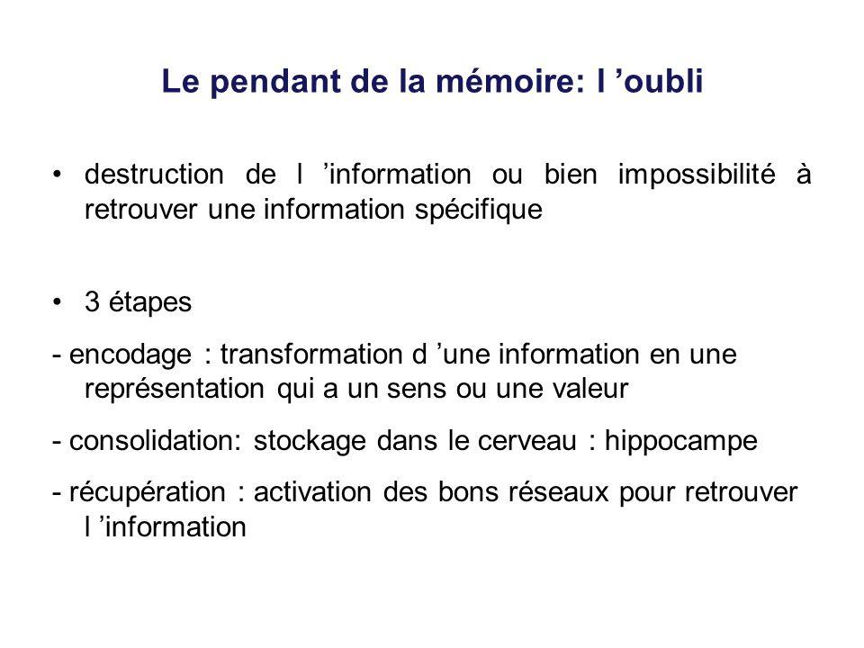 Le pendant de la mémoire: l oubli destruction de l information ou bien impossibilité à retrouver une information spécifique 3 étapes - encodage : tran