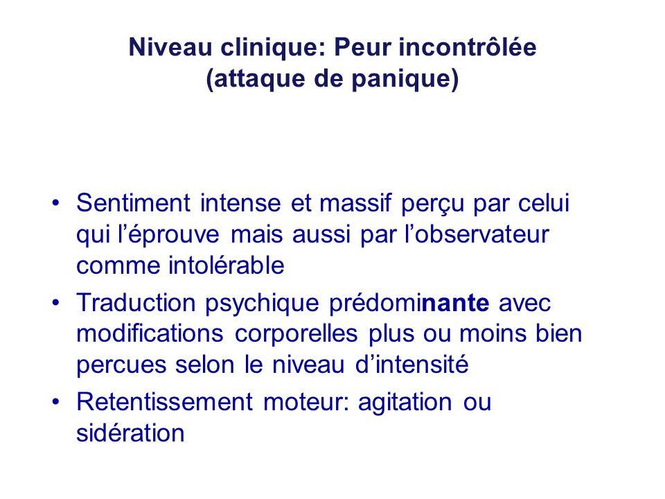Niveau clinique: Peur incontrôlée (attaque de panique) Sentiment intense et massif perçu par celui qui léprouve mais aussi par lobservateur comme into