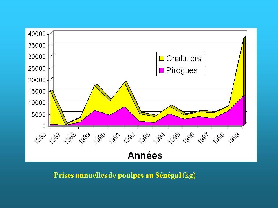 Prises annuelles de poulpes au Sénégal (kg)