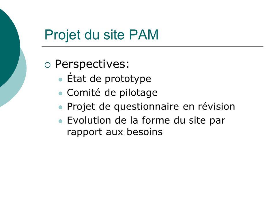 Perspectives: État de prototype Comité de pilotage Projet de questionnaire en révision Evolution de la forme du site par rapport aux besoins
