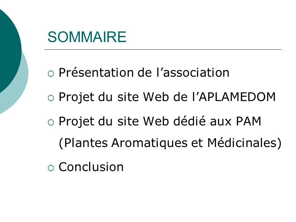 SOMMAIRE Présentation de lassociation Projet du site Web de lAPLAMEDOM Projet du site Web dédié aux PAM (Plantes Aromatiques et Médicinales) Conclusio