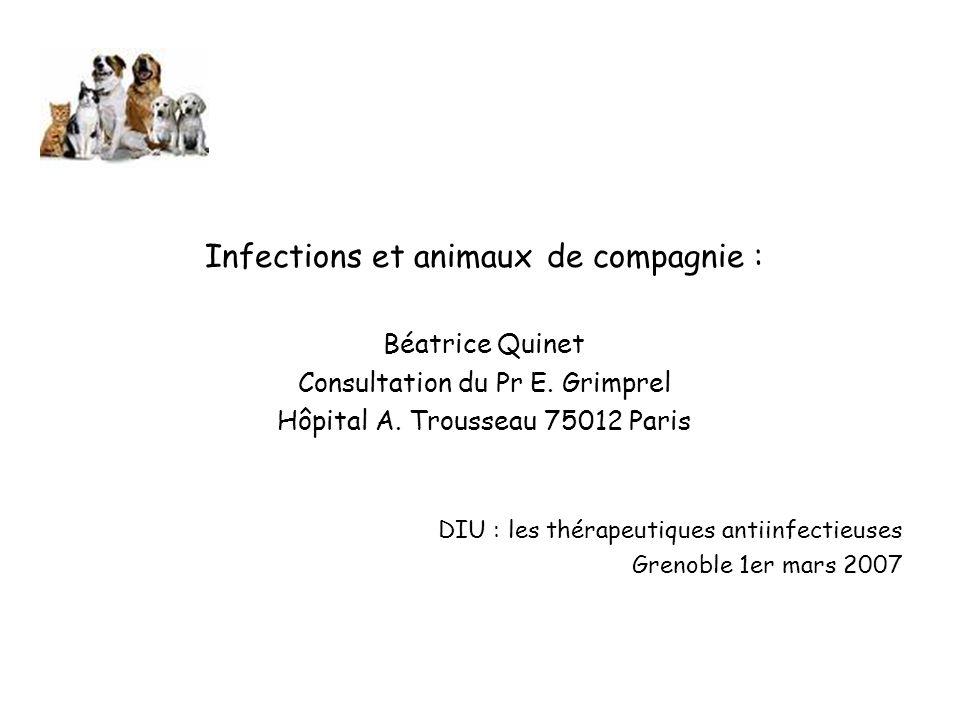 Infections et animaux de compagnie : Béatrice Quinet Consultation du Pr E.