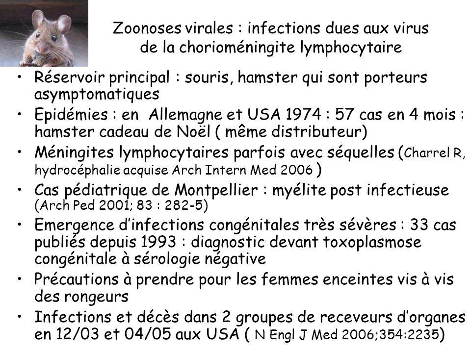 Zoonoses virales : infections dues aux virus de la chorioméningite lymphocytaire Réservoir principal : souris, hamster qui sont porteurs asymptomatiques Epidémies : en Allemagne et USA 1974 : 57 cas en 4 mois : hamster cadeau de Noël ( même distributeur) Méningites lymphocytaires parfois avec séquelles ( Charrel R, hydrocéphalie acquise Arch Intern Med 2006 ) Cas pédiatrique de Montpellier : myélite post infectieuse (Arch Ped 2001; 83 : 282-5) Emergence dinfections congénitales très sévères : 33 cas publiés depuis 1993 : diagnostic devant toxoplasmose congénitale à sérologie négative Précautions à prendre pour les femmes enceintes vis à vis des rongeurs Infections et décès dans 2 groupes de receveurs dorganes en 12/03 et 04/05 aux USA ( N Engl J Med 2006;354:2235 )