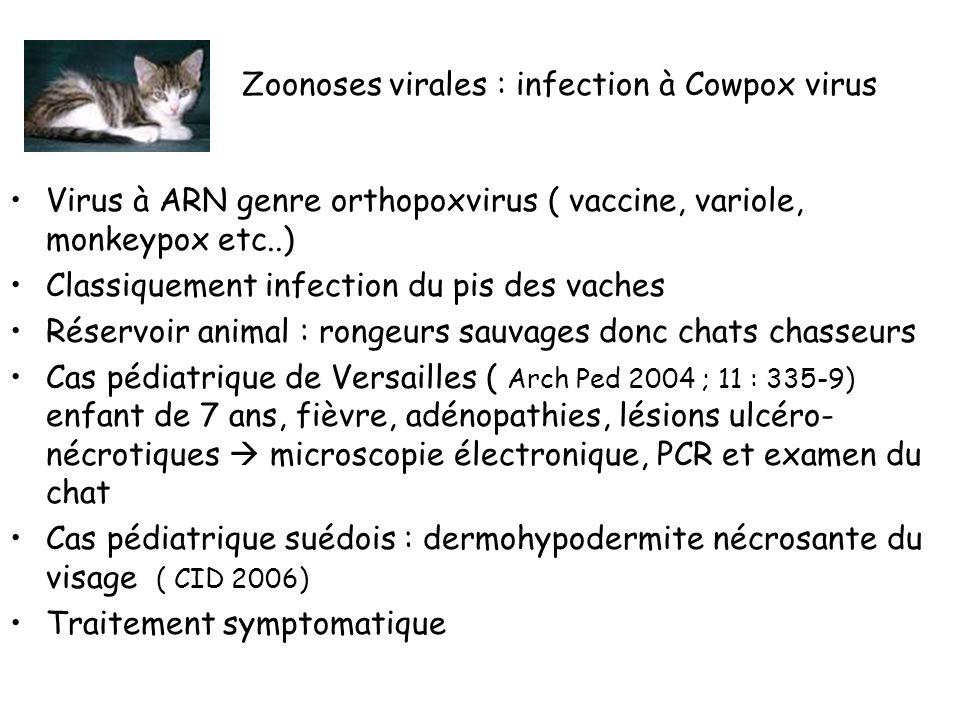 Zoonoses virales : infection à Cowpox virus Virus à ARN genre orthopoxvirus ( vaccine, variole, monkeypox etc..) Classiquement infection du pis des vaches Réservoir animal : rongeurs sauvages donc chats chasseurs Cas pédiatrique de Versailles ( Arch Ped 2004 ; 11 : 335-9) enfant de 7 ans, fièvre, adénopathies, lésions ulcéro- nécrotiques microscopie électronique, PCR et examen du chat Cas pédiatrique suédois : dermohypodermite nécrosante du visage ( CID 2006) Traitement symptomatique