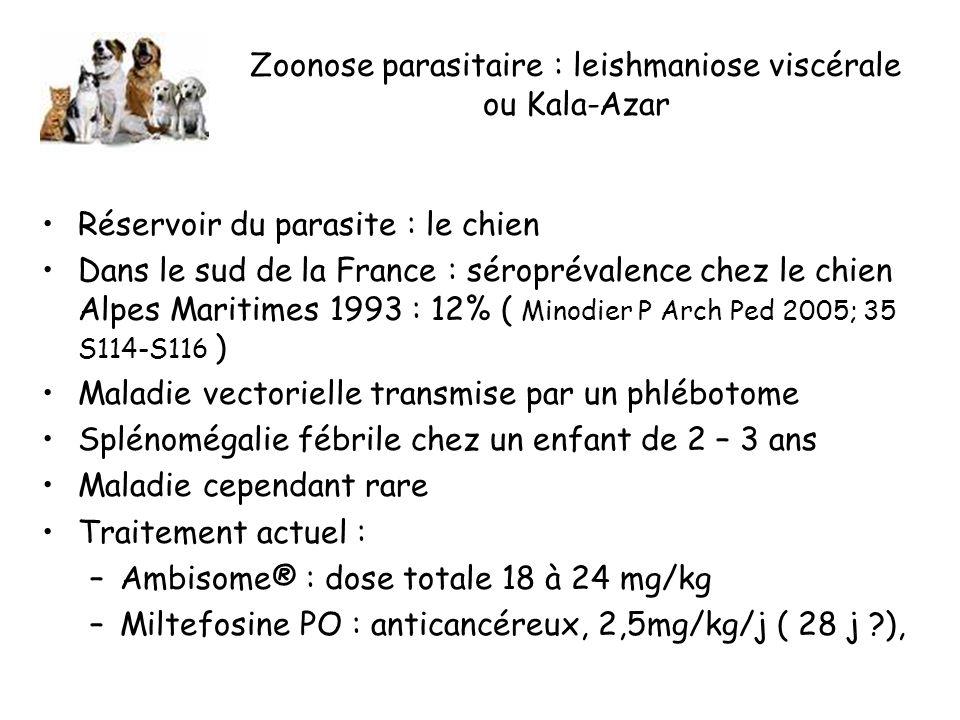 Zoonose parasitaire : leishmaniose viscérale ou Kala-Azar Réservoir du parasite : le chien Dans le sud de la France : séroprévalence chez le chien Alpes Maritimes 1993 : 12% ( Minodier P Arch Ped 2005; 35 S114-S116 ) Maladie vectorielle transmise par un phlébotome Splénomégalie fébrile chez un enfant de 2 – 3 ans Maladie cependant rare Traitement actuel : –Ambisome® : dose totale 18 à 24 mg/kg –Miltefosine PO : anticancéreux, 2,5mg/kg/j ( 28 j ?),