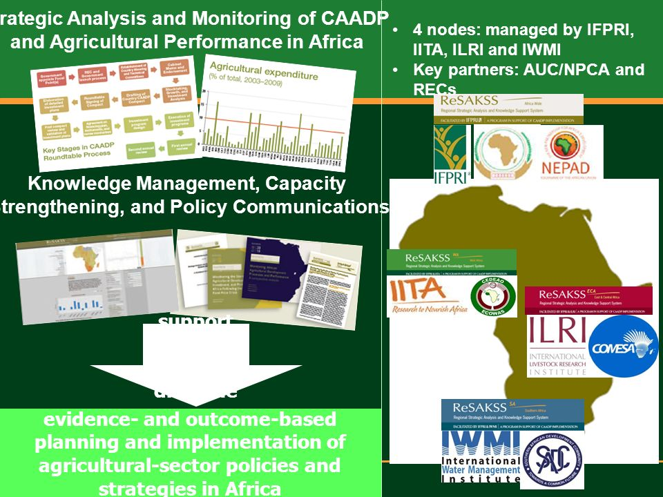 Regional Strategic Analysis and Knowledge Support System – West Africa evidence- and outcome-based planning and implementation of agricultural-sector policies and strategies in Africa Strategic Analysis and Monitoring of CAADP and Agricultural Performance in Africa Knowledge Management, Capacity Strengthening, and Policy Communications support review and dialogue 4 nodes: managed by IFPRI, IITA, ILRI and IWMI Key partners: AUC/NPCA and RECs