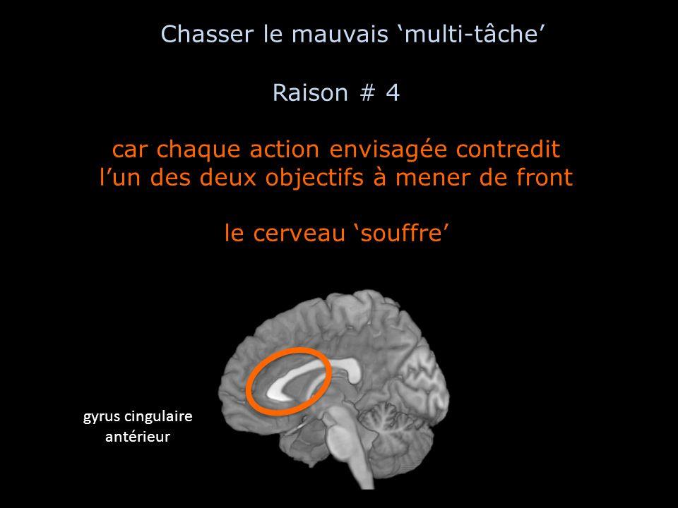 Raison # 4 car chaque action envisagée contredit lun des deux objectifs à mener de front le cerveau souffre gyrus cingulaire antérieur Chasser le mauv