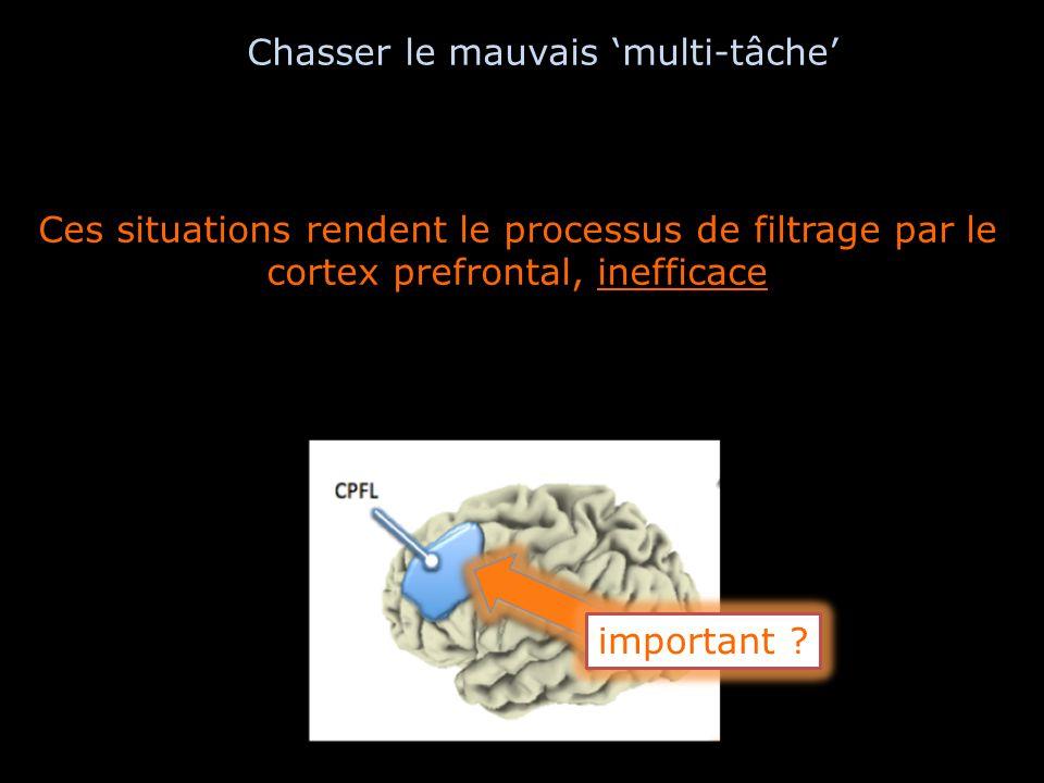 Ces situations rendent le processus de filtrage par le cortex prefrontal, inefficace important ? Chasser le mauvais multi-tâche