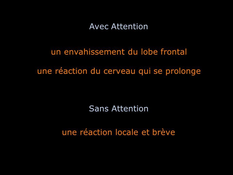 un envahissement du lobe frontal une réaction du cerveau qui se prolonge une réaction locale et brève Avec Attention Sans Attention