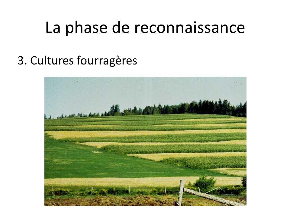 La phase de reconnaissance 3. Cultures fourragères