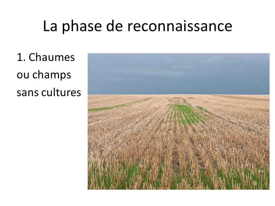 La phase de reconnaissance 1. Chaumes ou champs sans cultures