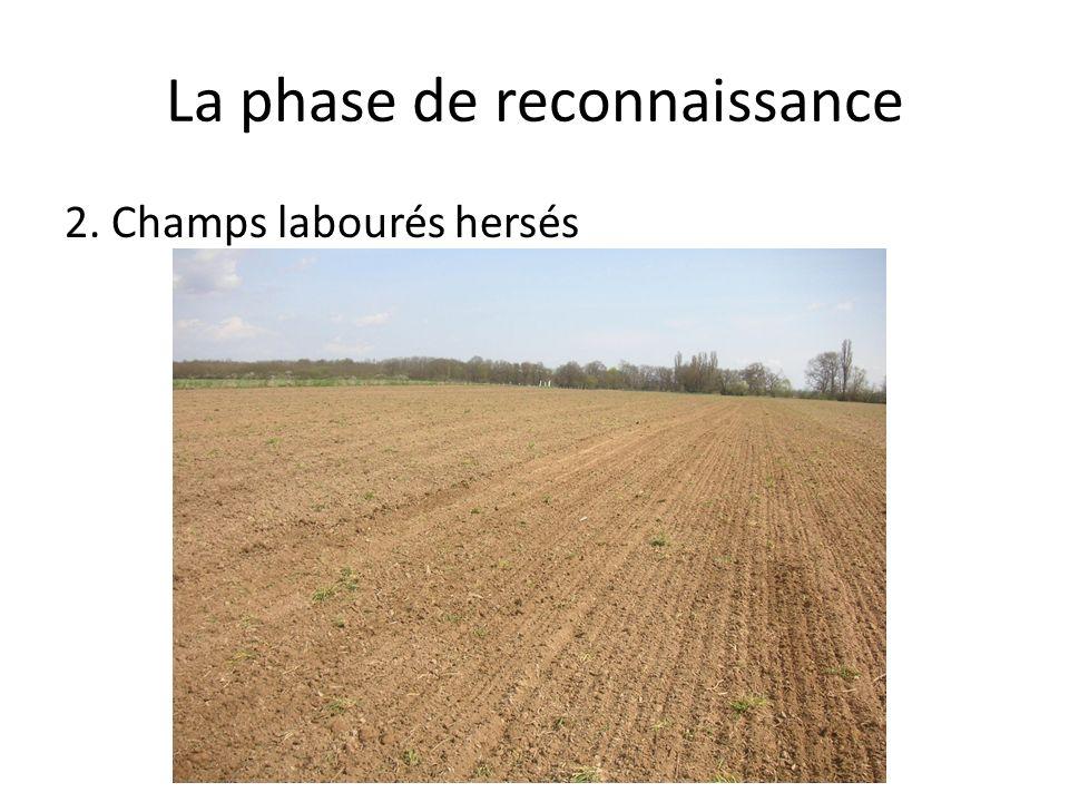 La phase de reconnaissance 2. Champs labourés hersés