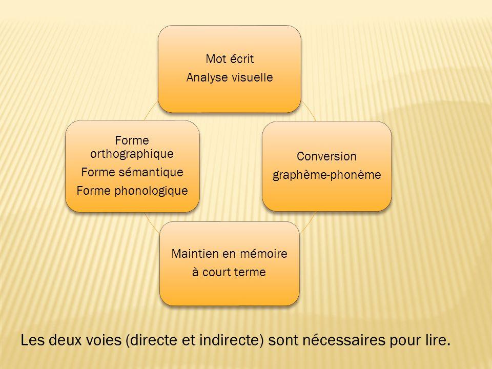 Mot écrit Analyse visuelle Conversion graphème-phonème Maintien en mémoire à court terme Forme orthographique Forme sémantique Forme phonologique Les deux voies (directe et indirecte) sont nécessaires pour lire.