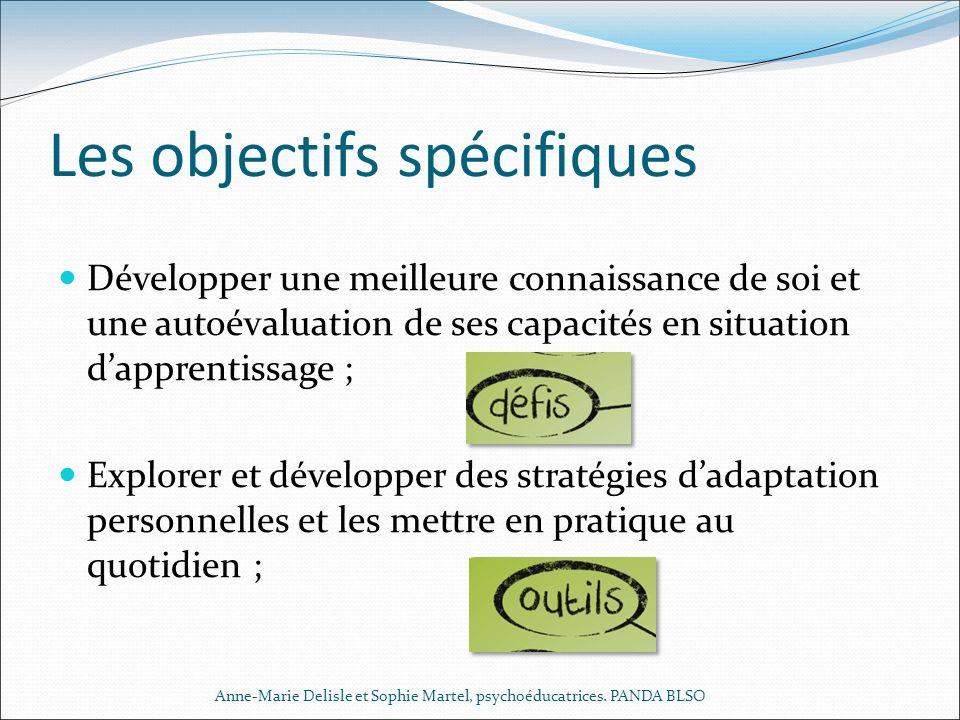 Les objectifs spécifiques Développer une meilleure connaissance de soi et une autoévaluation de ses capacités en situation dapprentissage ; Explorer e