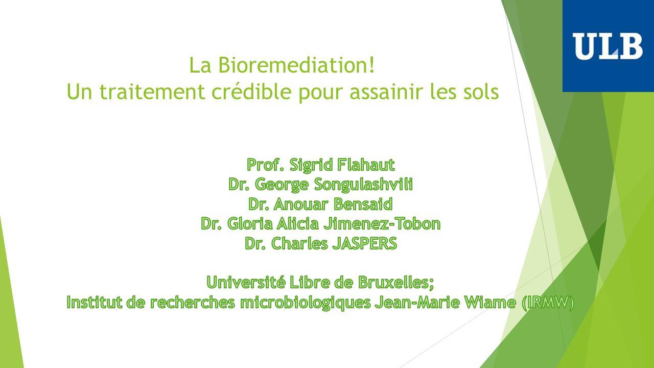La Bioremediation! Un traitement crédible pour assainir les sols