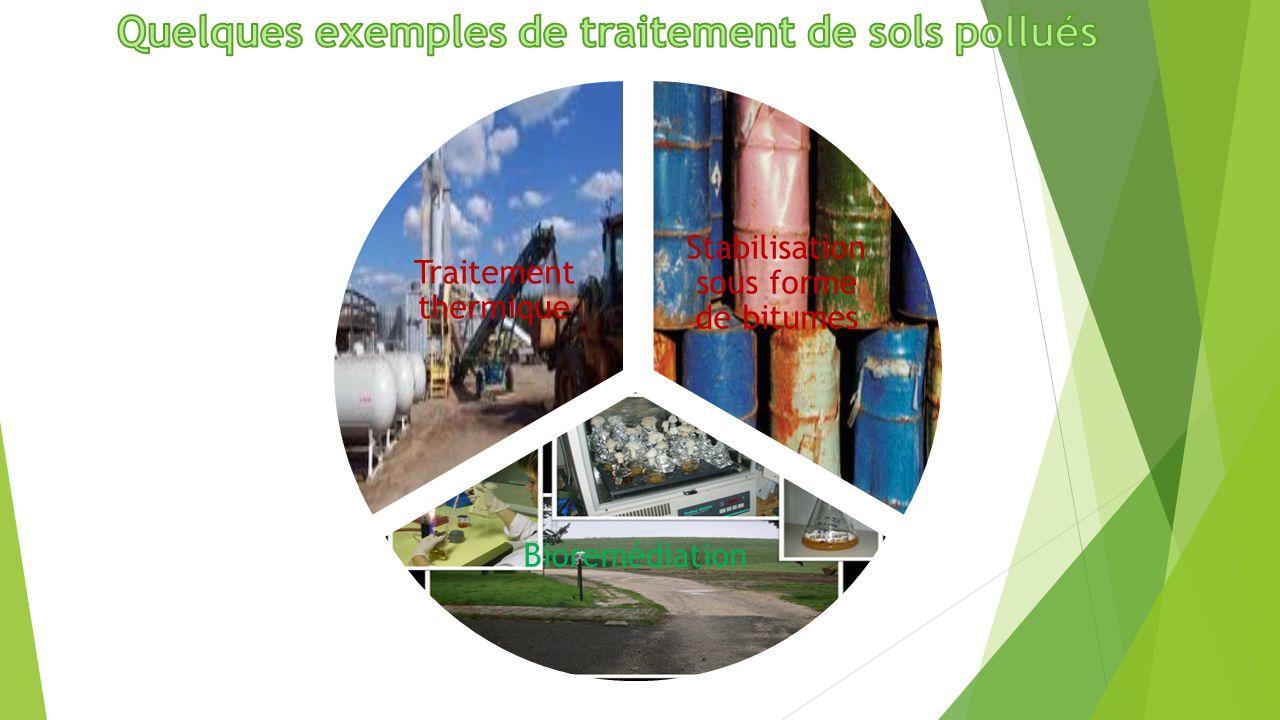 Stabilisation sous forme de bitumes Bioremédiation Traitement thermique