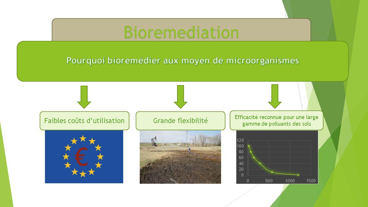 Bioremediation Faibles coûts dutilisationGrande flexibilité Efficacité reconnue pour une large gamme de polluants des sols