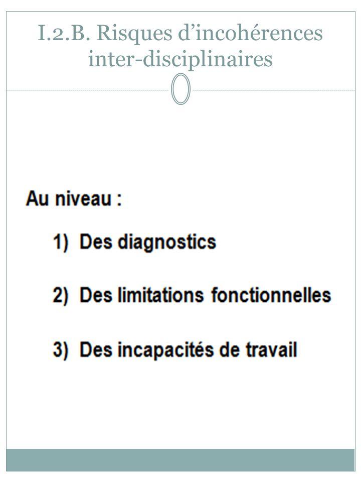 I.2.B. Risques dincohérences inter-disciplinaires