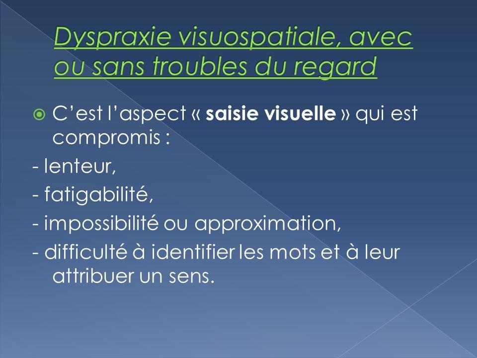 Cest laspect « saisie visuelle » qui est compromis : - lenteur, - fatigabilité, - impossibilité ou approximation, - difficulté à identifier les mots e