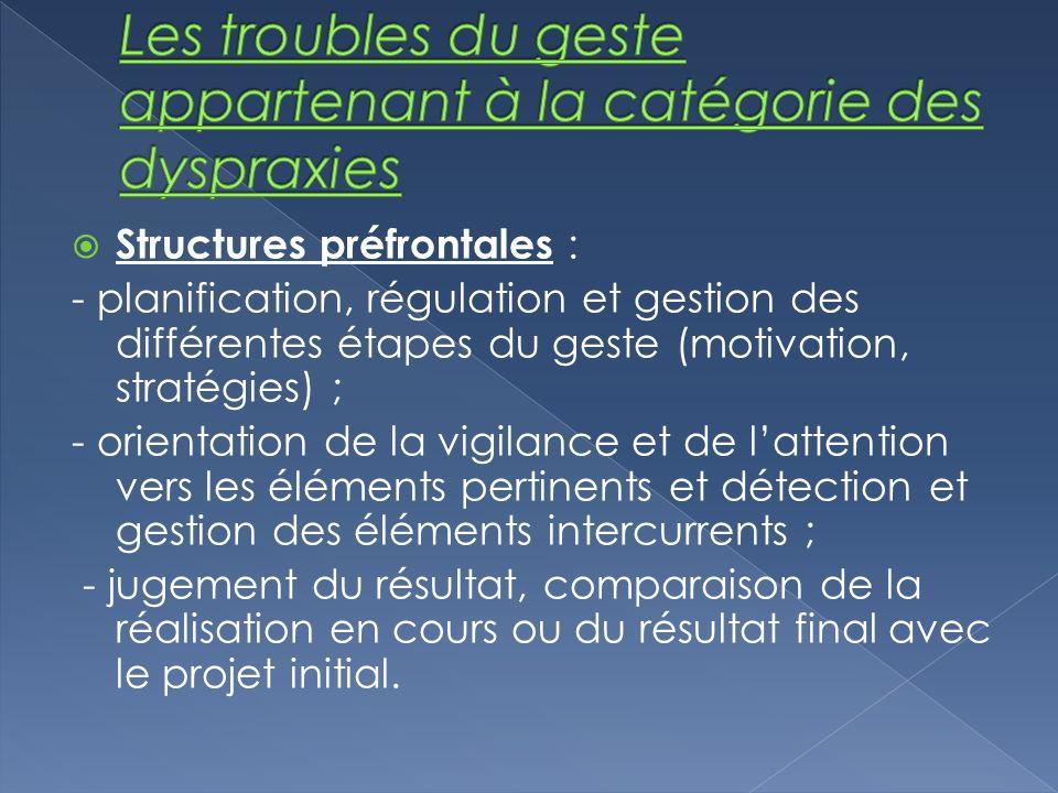Structures préfrontales : - planification, régulation et gestion des différentes étapes du geste (motivation, stratégies) ; - orientation de la vigila