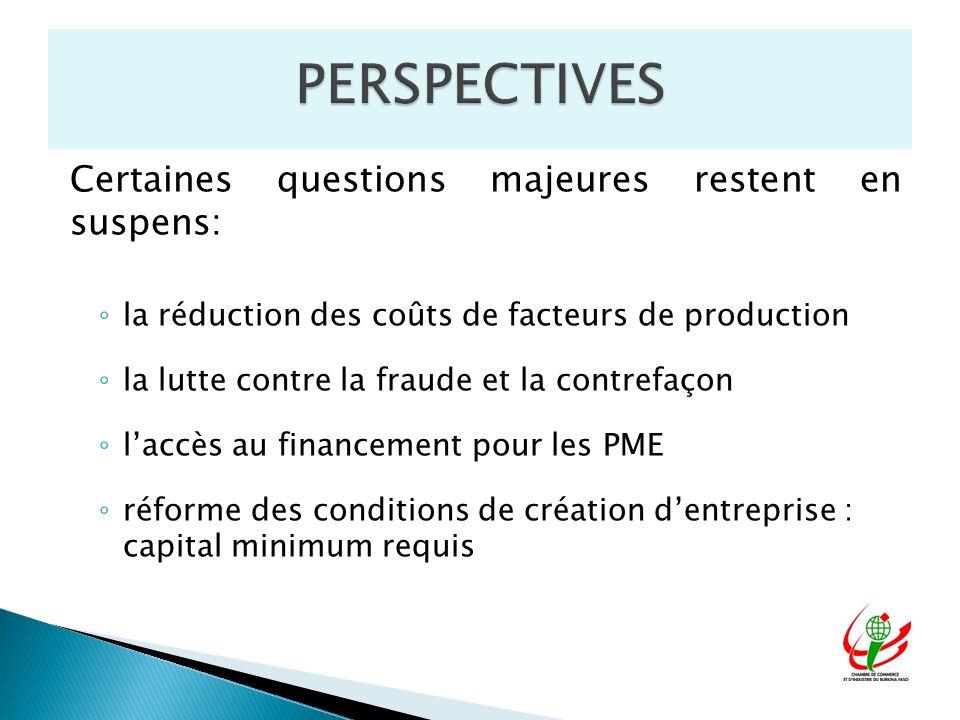 Certaines questions majeures restent en suspens: la réduction des coûts de facteurs de production la lutte contre la fraude et la contrefaçon laccès au financement pour les PME réforme des conditions de création dentreprise : capital minimum requis
