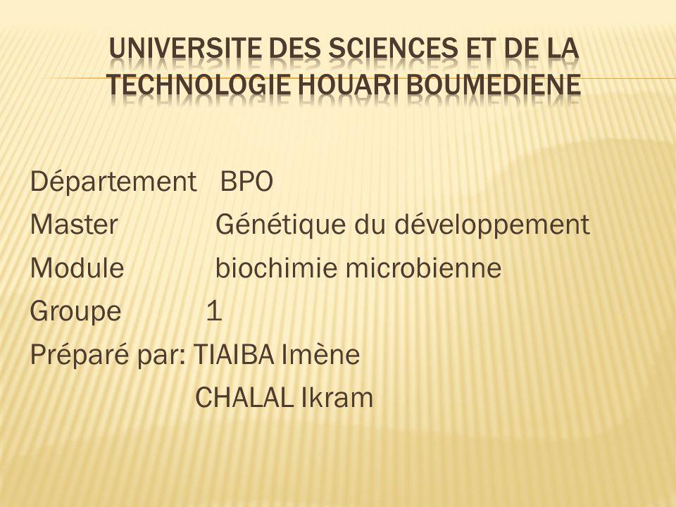 Département BPO Master Génétique du développement Module biochimie microbienne Groupe 1 Préparé par: TIAIBA Imène CHALAL Ikram