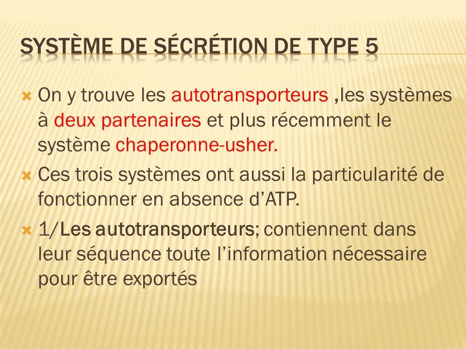 On y trouve les autotransporteurs,les systèmes à deux partenaires et plus récemment le système chaperonne-usher.
