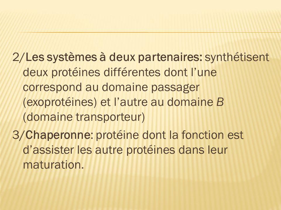 2/Les systèmes à deux partenaires: synthétisent deux protéines différentes dont lune correspond au domaine passager (exoprotéines) et lautre au domaine Β (domaine transporteur) 3/Chaperonne: protéine dont la fonction est dassister les autre protéines dans leur maturation.