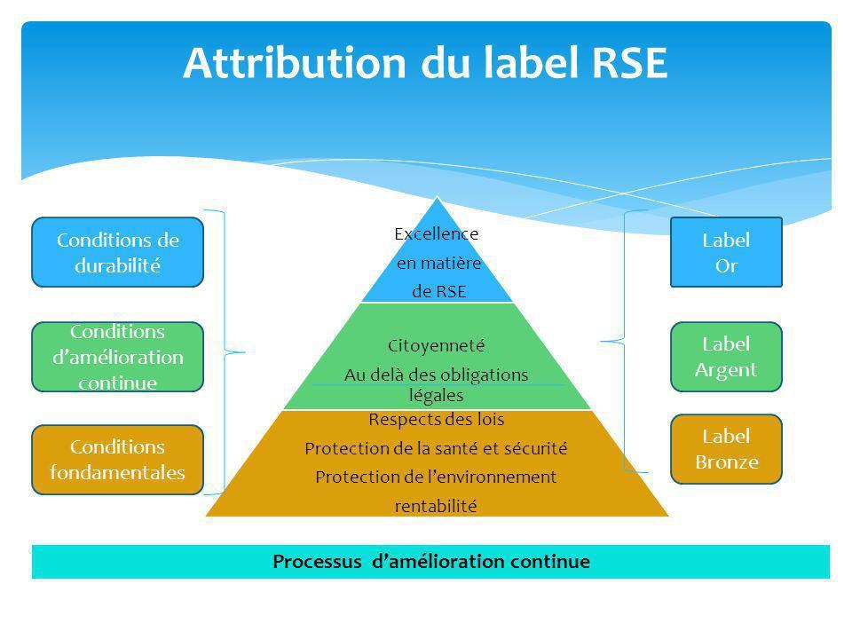 Excellence en matière de RSE Citoyenneté Au delà des obligations légales Respects des lois Protection de la santé et sécurité Protection de lenvironne