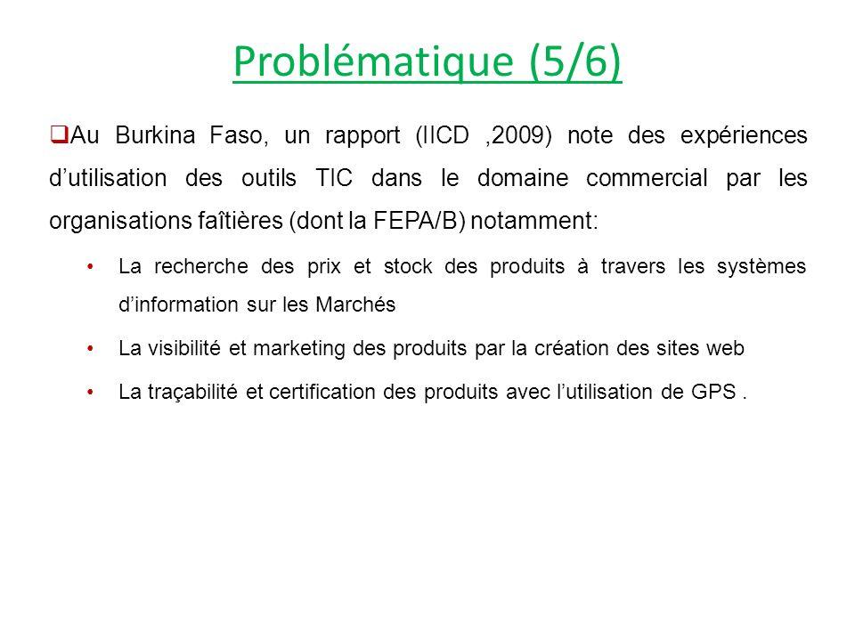 Problématique (5/6) Au Burkina Faso, un rapport (IICD,2009) note des expériences dutilisation des outils TIC dans le domaine commercial par les organisations faîtières (dont la FEPA/B) notamment: La recherche des prix et stock des produits à travers les systèmes dinformation sur les Marchés La visibilité et marketing des produits par la création des sites web La traçabilité et certification des produits avec lutilisation de GPS.