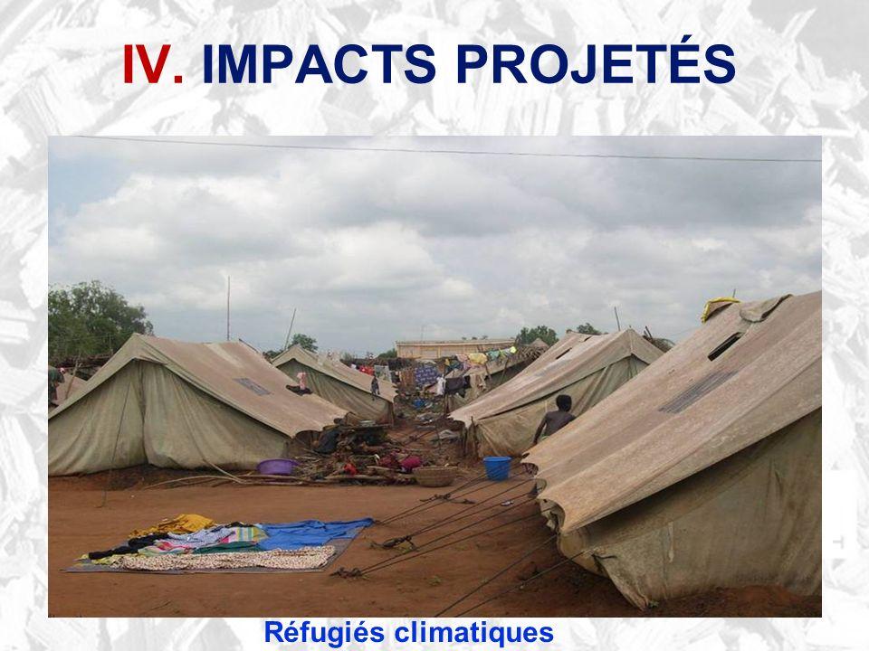 Réfugiés climatiques IV. IMPACTS PROJETÉS