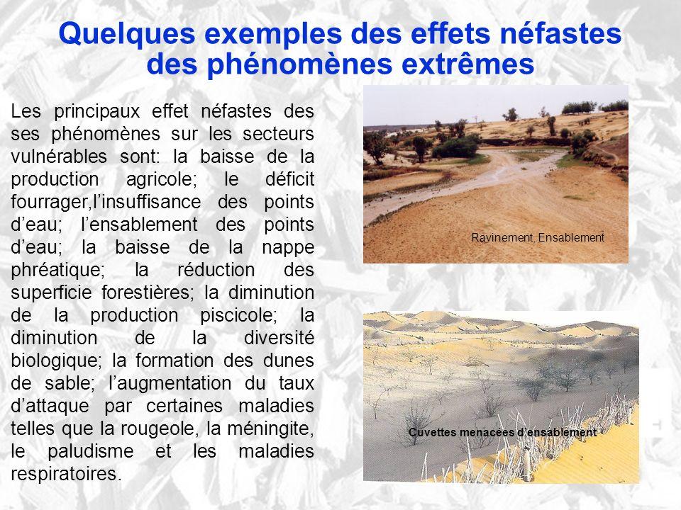 Quelques exemples des effets néfastes des phénomènes extrêmes Les principaux effet néfastes des ses phénomènes sur les secteurs vulnérables sont: la b