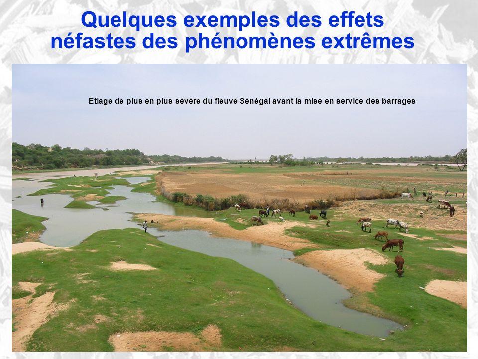 Quelques exemples des effets néfastes des phénomènes extrêmes Etiage de plus en plus sévère du fleuve Sénégal avant la mise en service des barrages