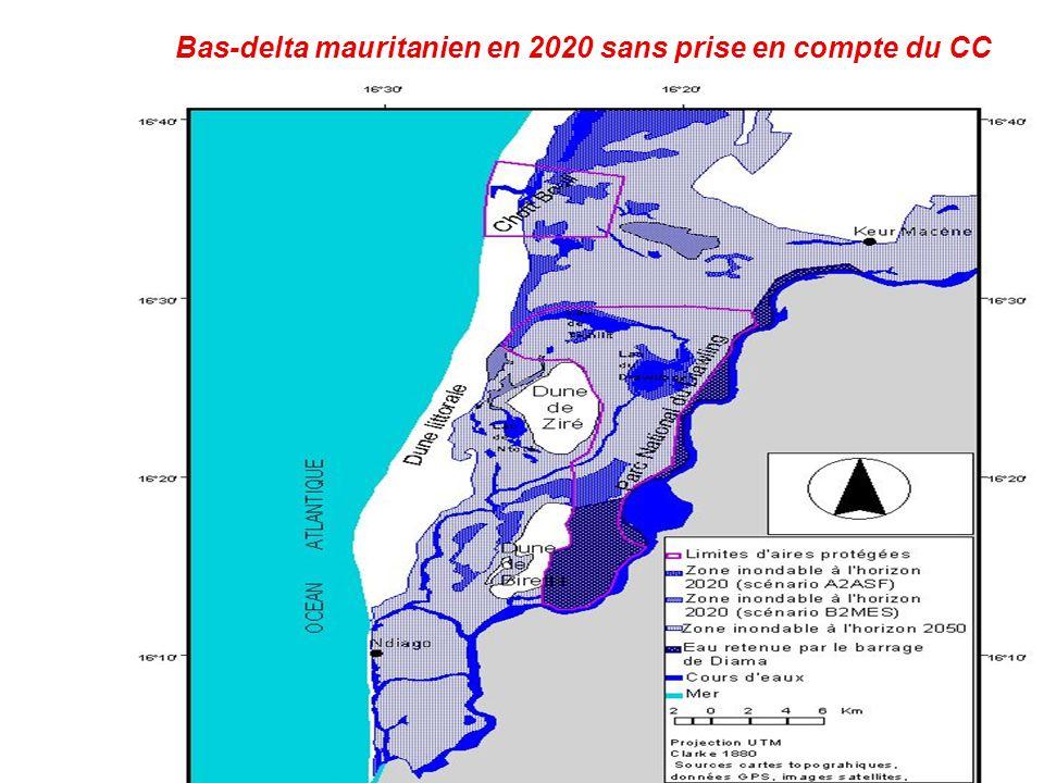 Bas-delta mauritanien en 2020 sans prise en compte du CC